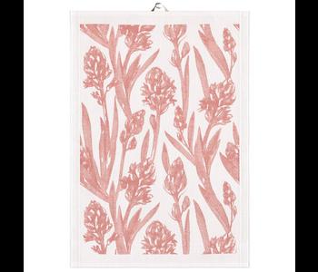 Tea Towel Ekelund HYACINTHUS 35 x 50 cm