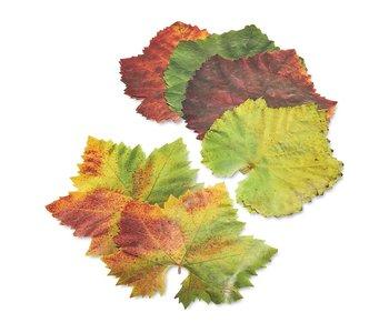 Grape Parchment Leaves/ Set of 20