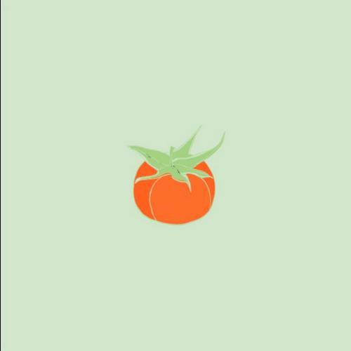 OCD Napkin Cocktail PAVIOT Tomate