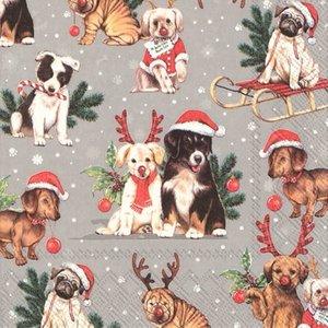 IHR Napkin Lunch Paper DOGS CELEBRATION GREY