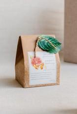 COTTAGE GREENHOUSE FINE SALT SCRUB | GRAPEFRUIT & BLOOD ORANGE