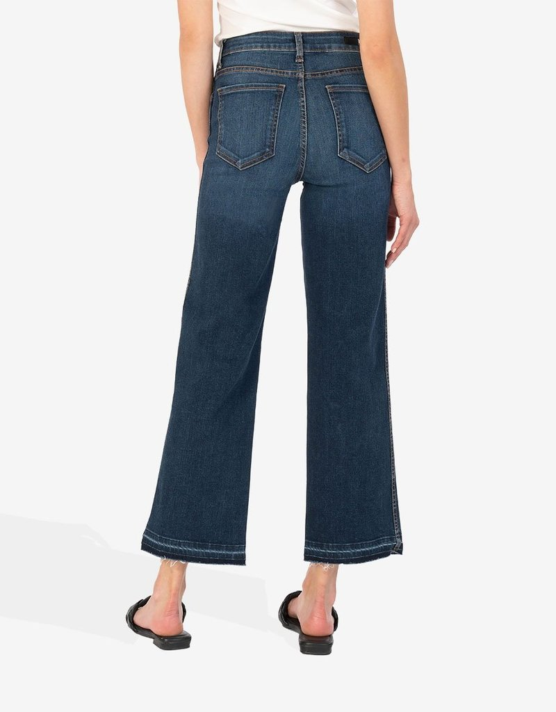 KUT FROM THE KLOTH CHARLOTTE HIGH RISE FAB AB WIDE LEG-ECO FRIENDLY, FELICITY WASH