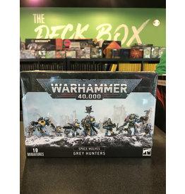Warhammer 40K Space Wolves Pack / Grey Hunters