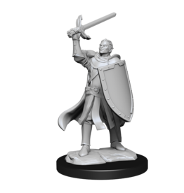 D & D Minis DND UNPAINTED MINIS WV14 HALF-ELF PALADIN MALE (PREORDER EXPECTED April 15)