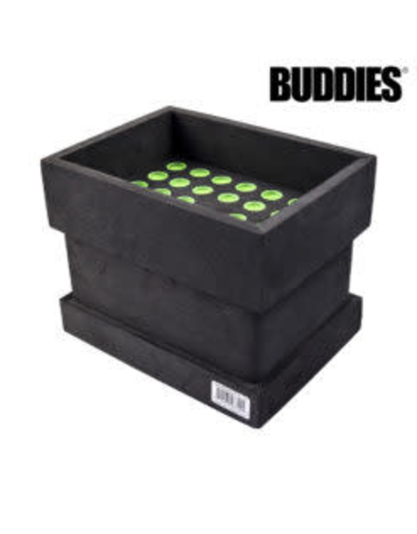 BUDDIES BUDDIES BUMP BOX