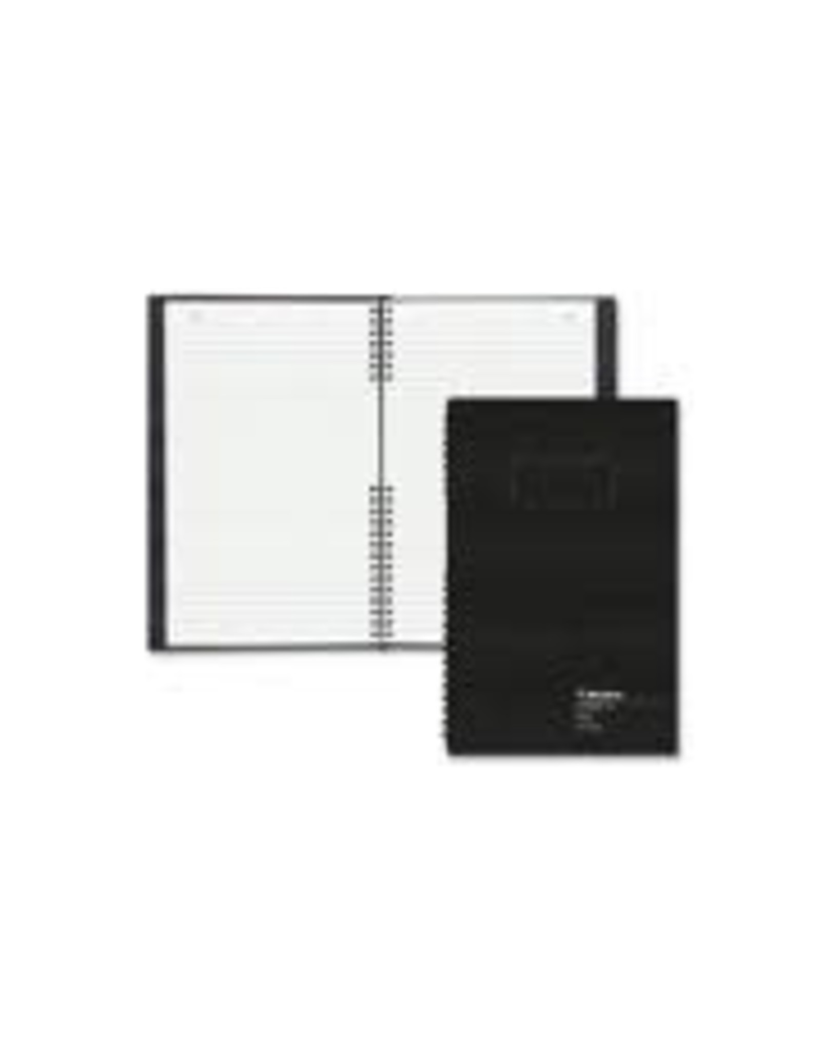 Blueline ACCOUNT BOOK-ACCOUNTPRO, 200 PAGE WHITE 12.5X7-7/8 RECORD