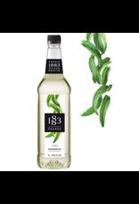 1883 Maison Routin France 1883 Syrup, Peppermint 1L Bottle