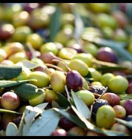 Prairie Oils & Vinegars Prairie Oils, Arbequina EVOO Mild