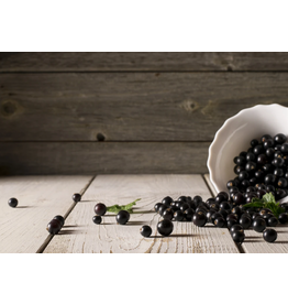 Liquid Gold Olive Oils & Vinegars Inc Liquid Gold, Black Currant Dark Balsamic, 200ml