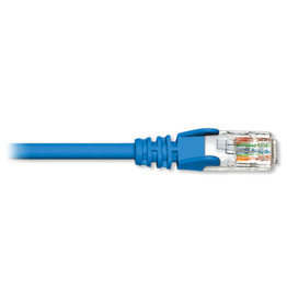 BlueDiamond BlueDiamond Premium Cat6 Patch Cable, 75ft