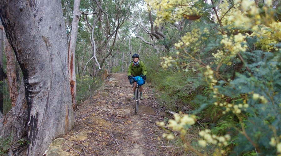 Mountains to the Coast: Mt Wilson to Ourimbah