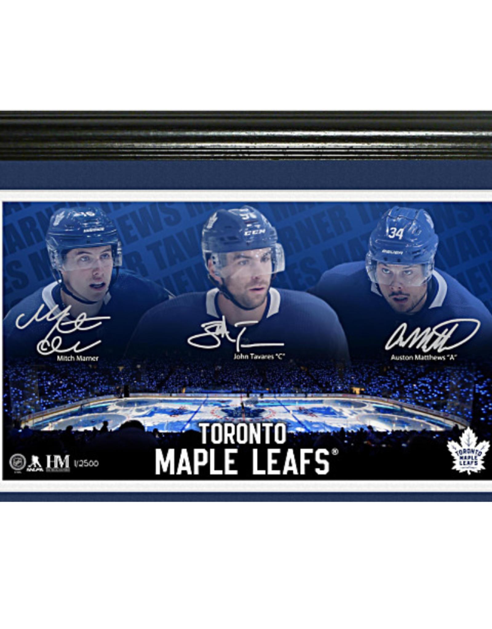 Highland Mint Highland Mint Team Force Wall Decor Toronto Maple Leafs