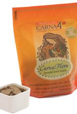 CARNA4 FLORA4 BISCUIT