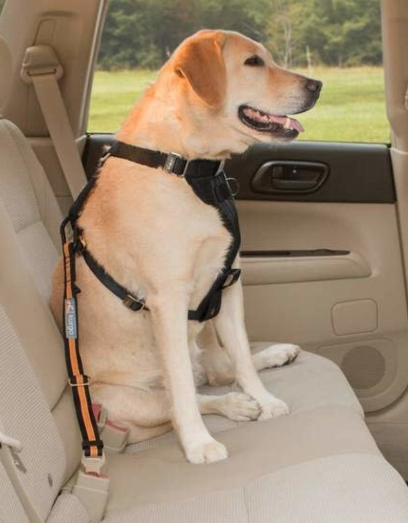 KURGO DIRECT SEAT BELT TETHER