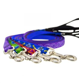 "LUPINE Lupine 3/4"" Width Leashes 6'"