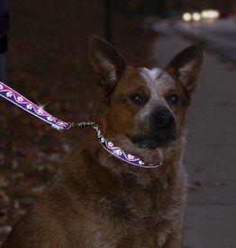 LUPINE Highlights Reflective Collars