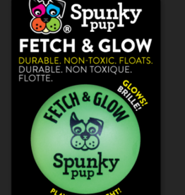 Spunky Pup Glow & Fetch Ball