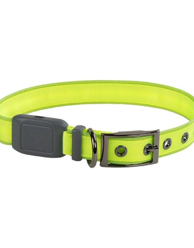 NITE IZE Rechargeable Collar