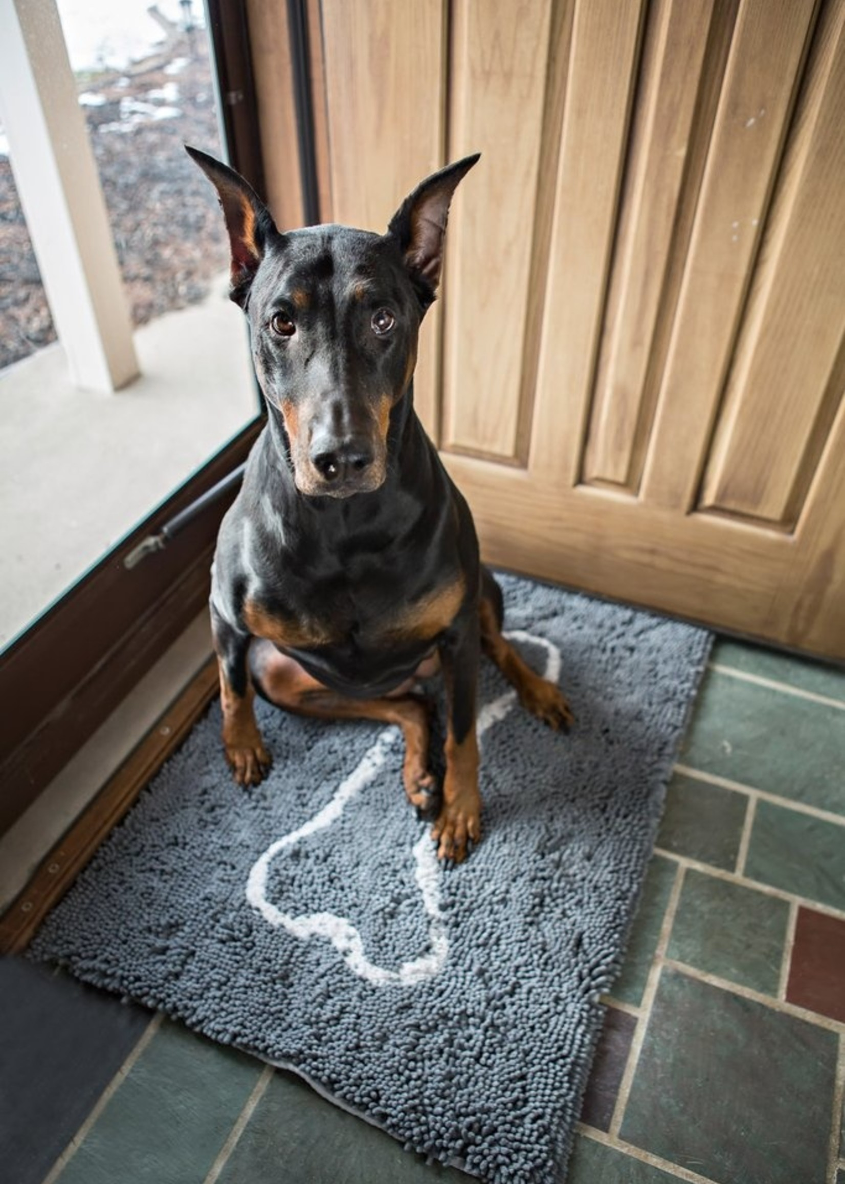 SOGGY DOGGY Doormat Large