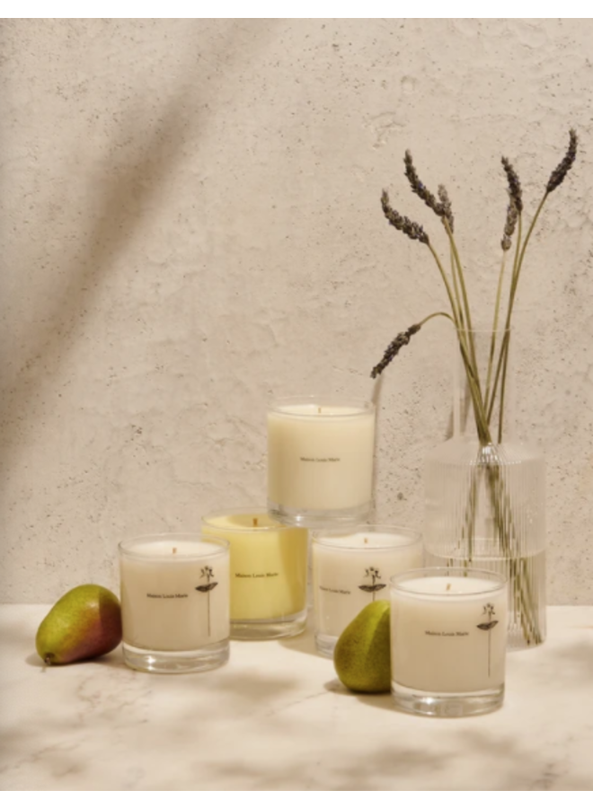 ANTIDRIS/CASSIS CANDLE