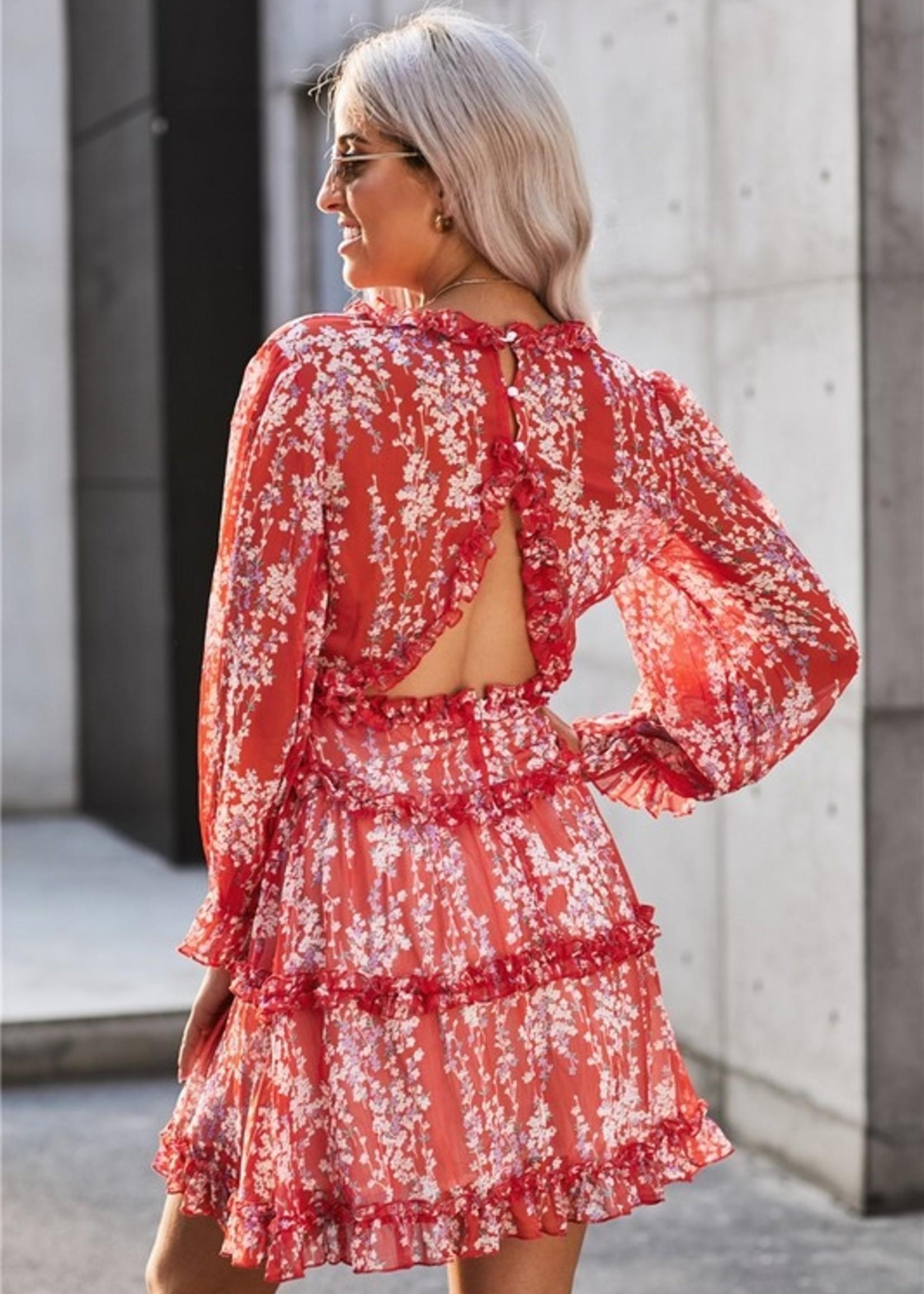Print ruffle mini dress 2 colors