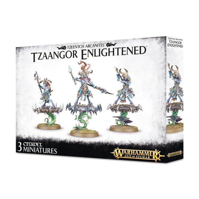 Tzeentch Arcanites - Tzaangor Enlightened