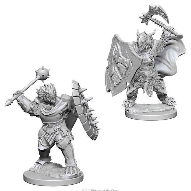 D&D: Dragonborn Paladin - Male