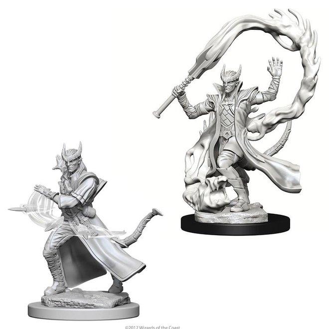 D&D: Tiefling Sorcerer - Male
