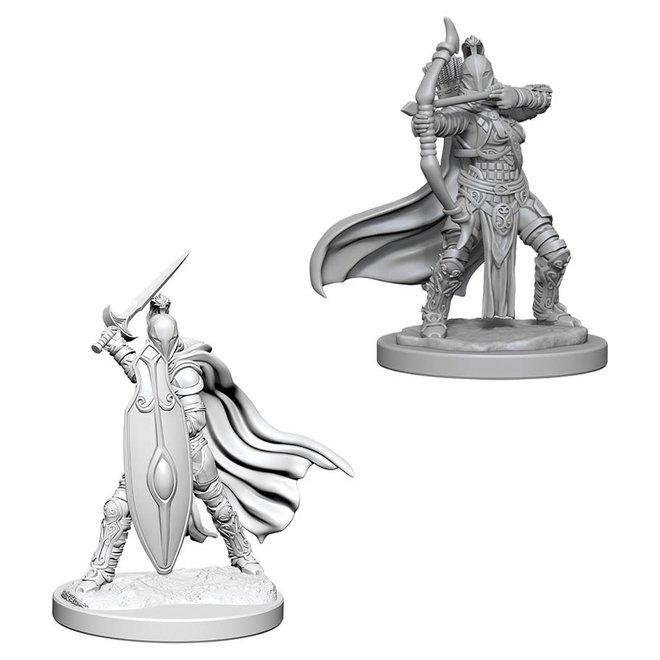 Pathfinder: Female Knights/Gray Maidens