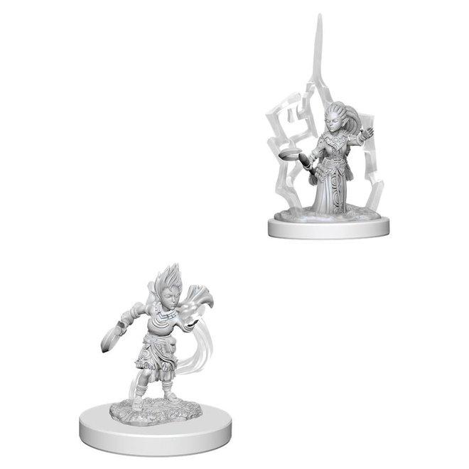 Pathfinder: Gnome Druid - Female