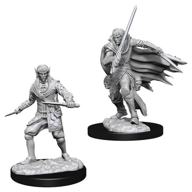 Pathfinder: Elf Rogue - Male