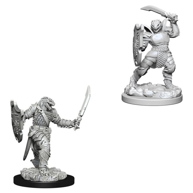 D&D: Dragonborn Paladin - Female