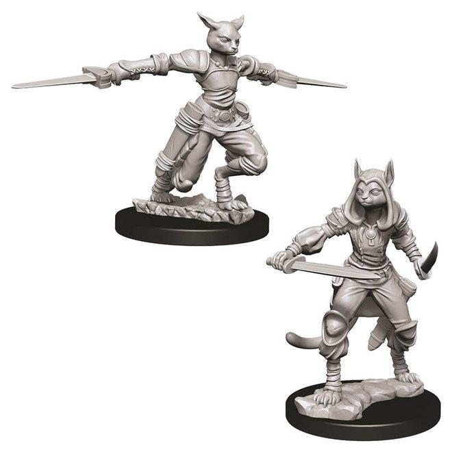 D&D: Tabaxi Rogue - Female