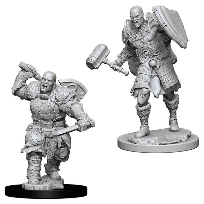 D&D: Goliath Fighter - Male