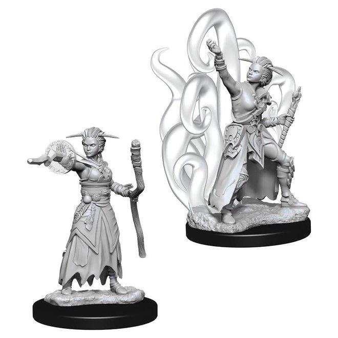 D&D: Human Warlock - Female