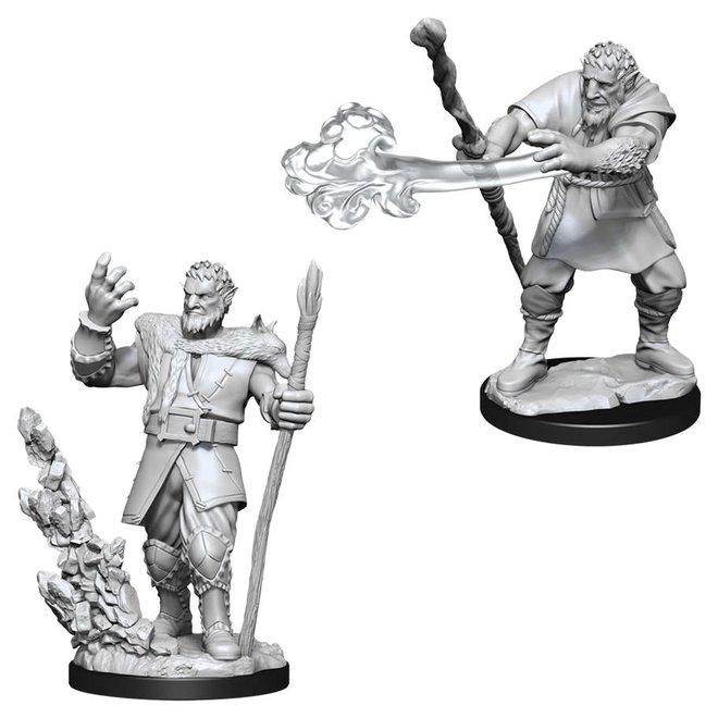 D&D: Firbolg Druid - Male