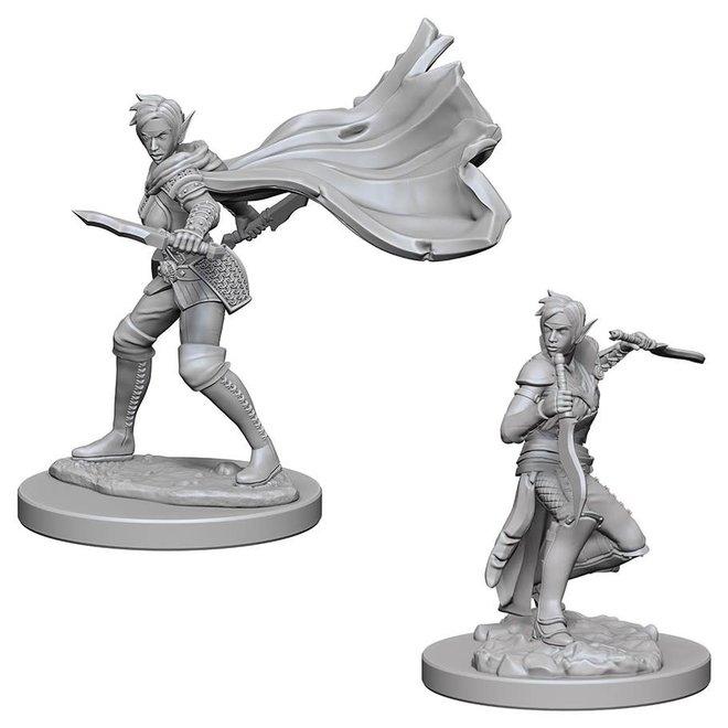 Pathfinder: Elf Rogue - Female