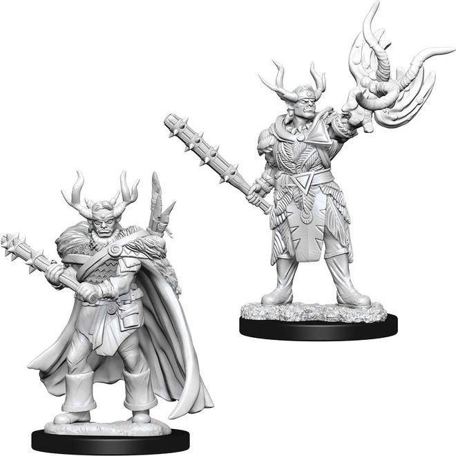 Pathfinder: Half-Orc Druid - Male