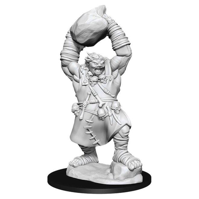 Pathfinder: Ogre