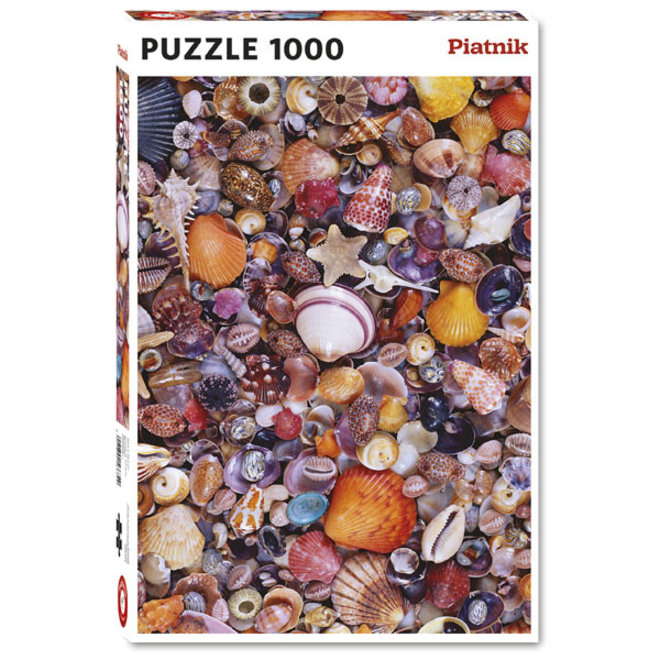 Seashells - 1000 pcs