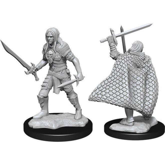 Pathfinder: Elf Fighter Male