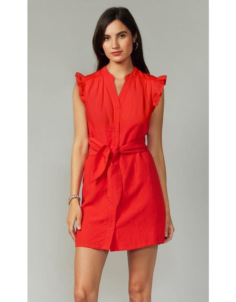 Greylin Jena Dress