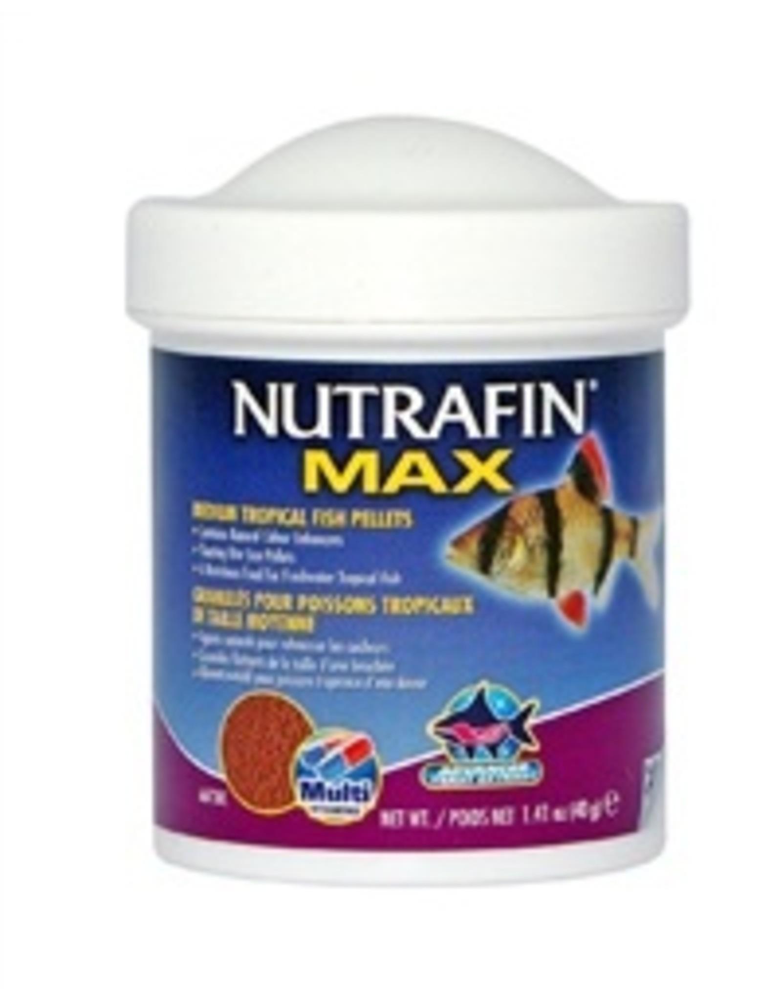NutraFin NUTRAFIN Max Tropical Fish Pellets Medium