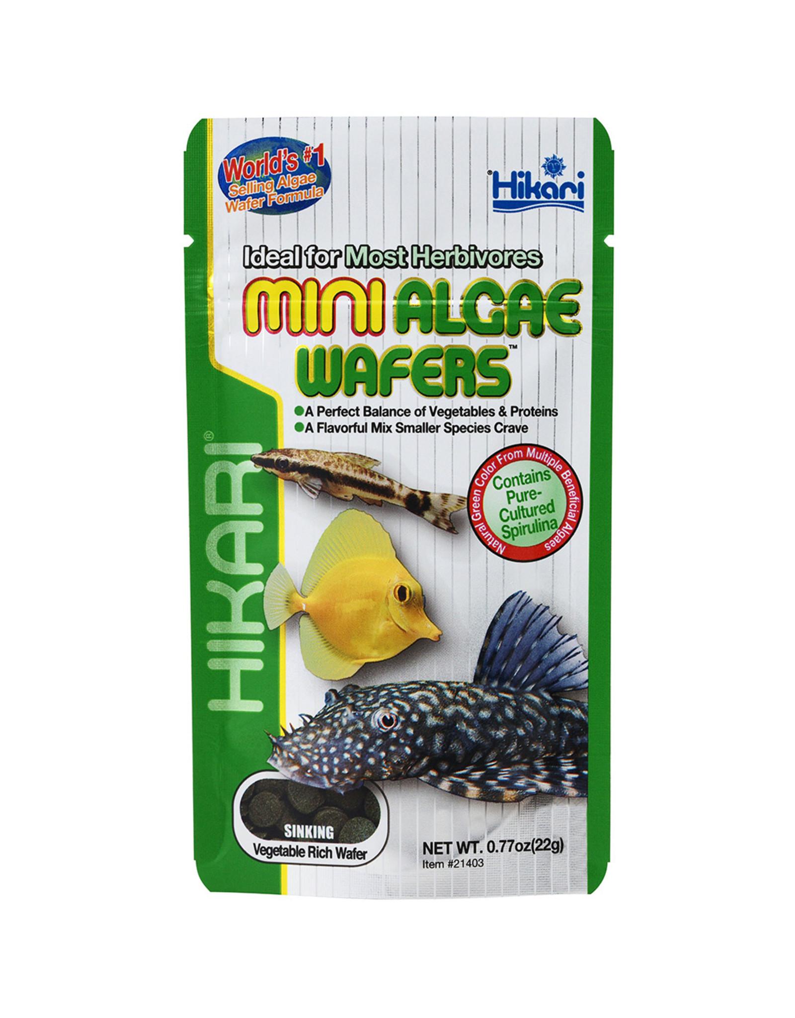 Hikari Sales USA, Inc. HIKARI Tropical Algae Wafers Mini