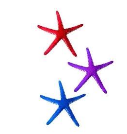 AquaTop AQUATOP Sea Star 3 Pack