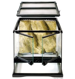 Exo Terra EXO TERRA All Glass Terrarium WIDE