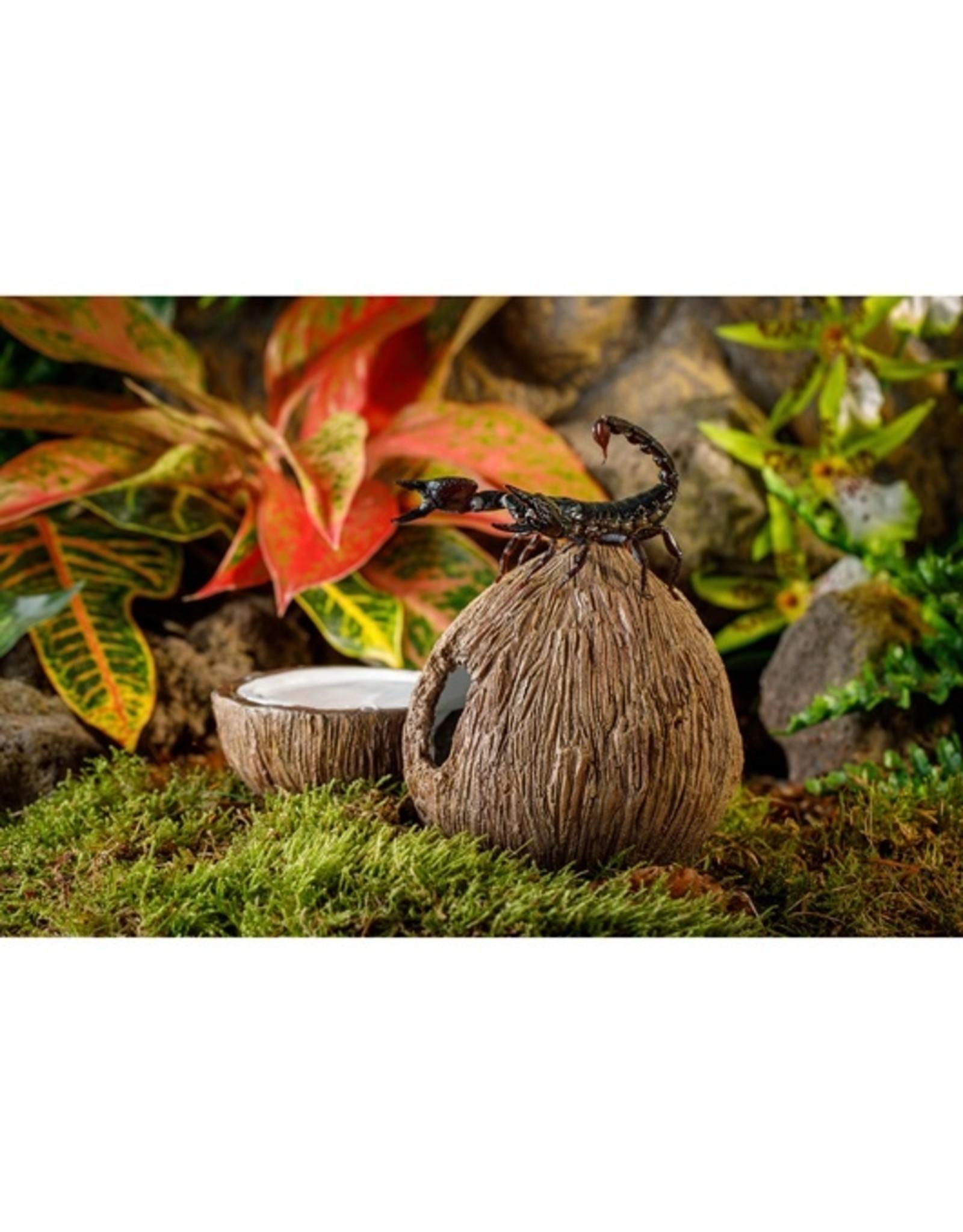 Exo Terra EXO TERRA Coconut Hide & Water Dish