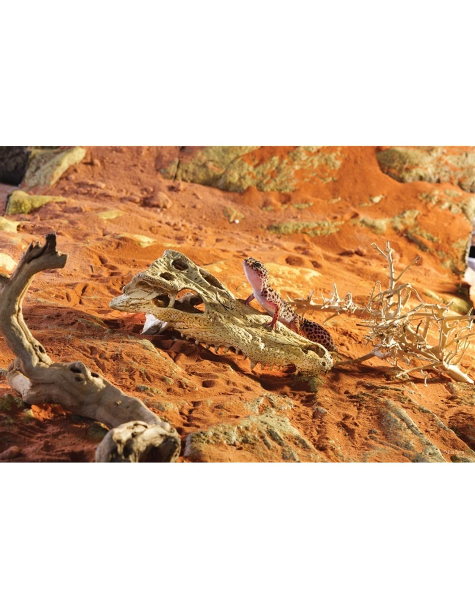 Exo Terra EXO TERRA Terrarium Decor Crocodile Skull Large