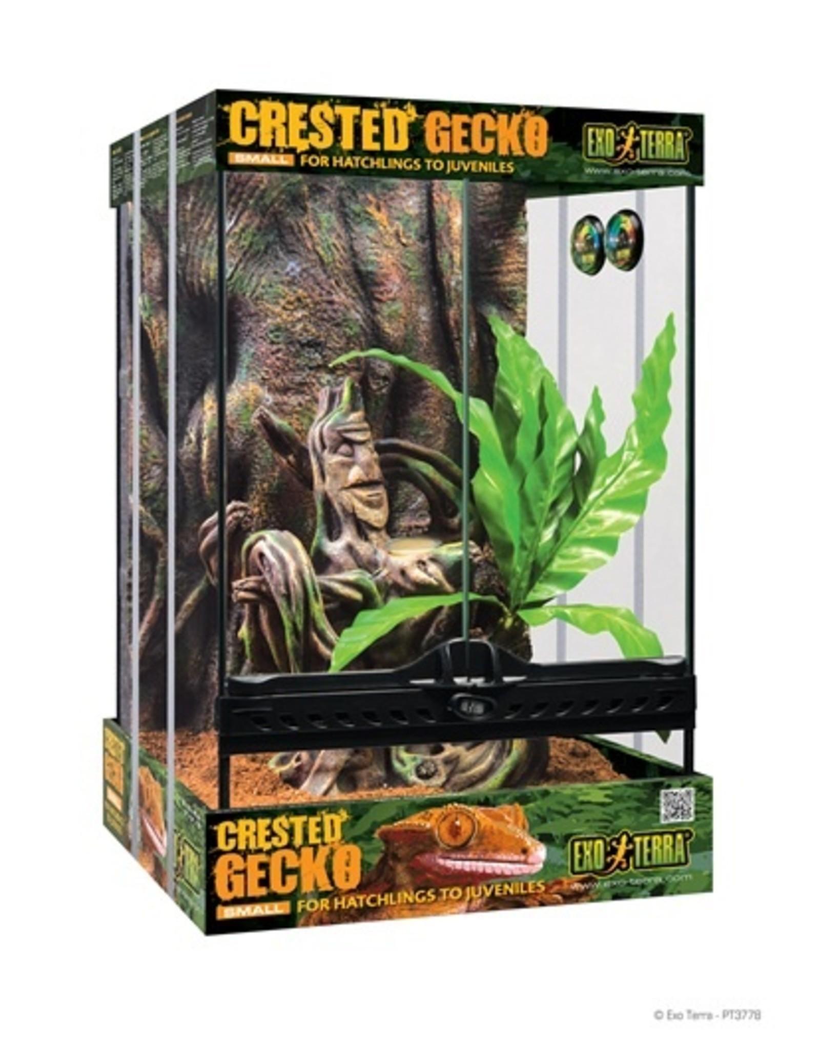 Exo Terra EXO TERRA Crested Gecko Kit - Sm 30x30x45cm