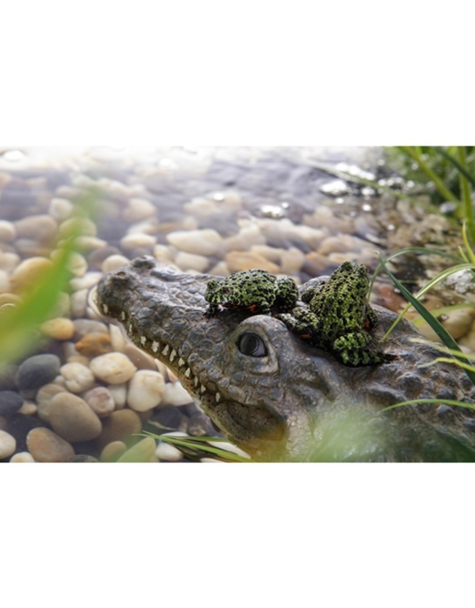 Exo Terra EXO TERRA Croc - Turtle Island